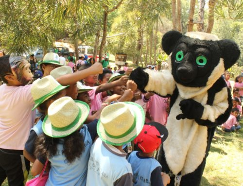 World Lemur Festival 2016